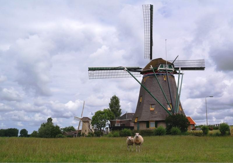 Cock van der Voort, vergezicht met molens in Maasland