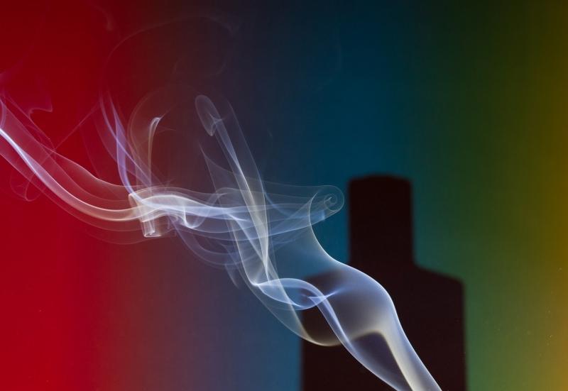 ben van elswijk rook